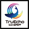 TruEcho CHIRP Fish FInder